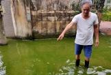 Kinh hãi con ngõ ở Quảng Bình thành ao nước thải, bốc mùi thối dù không mưa