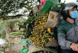 Thực phẩm từ Trung Quốc ồ ạt về Việt Nam