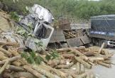 Vụ lật xe chở gỗ làm 7 người chết: Xử phạt doanh nghiệp 46 triệu đồng